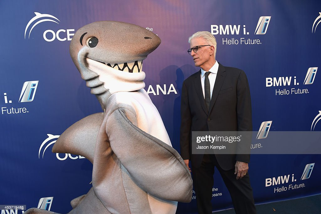 Actor Ted Danson attends Oceana's Annual SeaChange Summer Party on August 16 2014 in Laguna Beach California