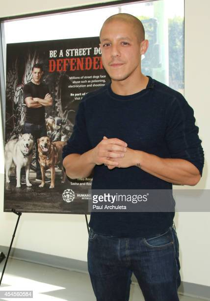 Actor Theo Rossi teams up with the Humane Society International to launch a campaign to protect street dogs at the Pets for Life Center on September...