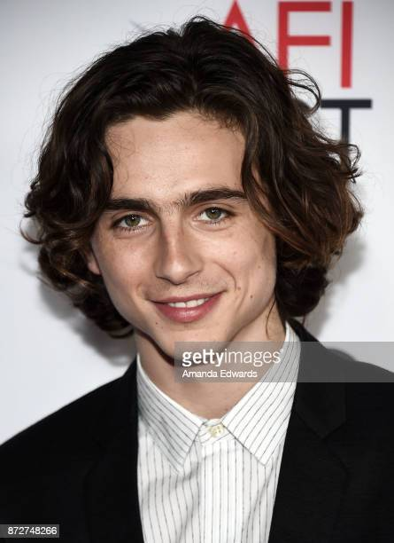 Actor Timothee Chalamet arrives at the AFI FEST 2017 Presented By Audi screening of 'Call Me By Your Name' at the TCL Chinese Theatre on November 10...