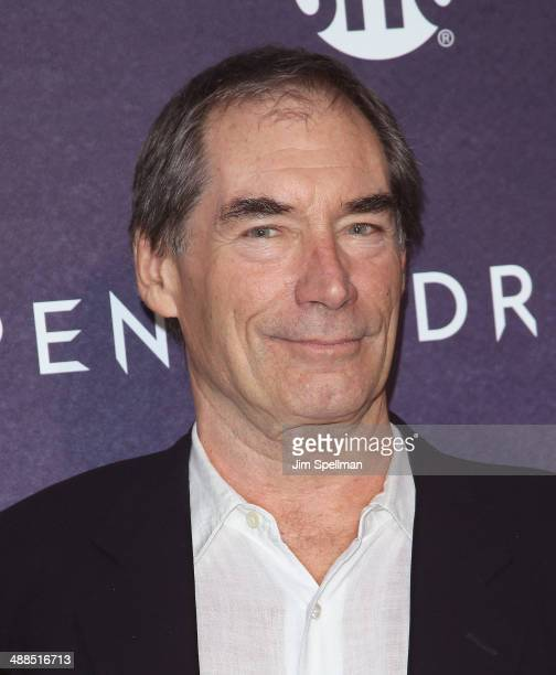 Actor Timothy Dalton attends the 'Penny Dreadful' series world premiere at The Highline Hotel on May 6 2014 in New York City