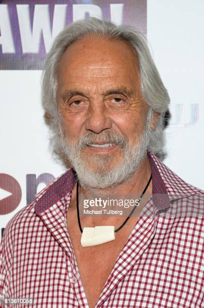Actor Tommy Chong attends the premiere of Wow and Flutter Media and Amazon Prime Video's 'It's Gawd' at Pacific Theatres at The Grove on July 12 2017...