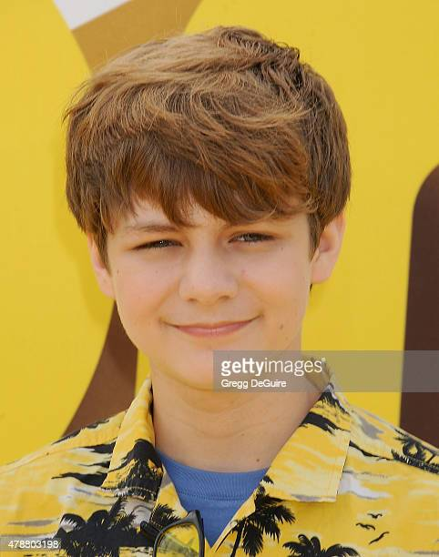Actor Ty Simpkins arrives at the premiere of Universal Pictures and Illumination Entertainment's 'Minions' at The Shrine Auditorium on June 27 2015...