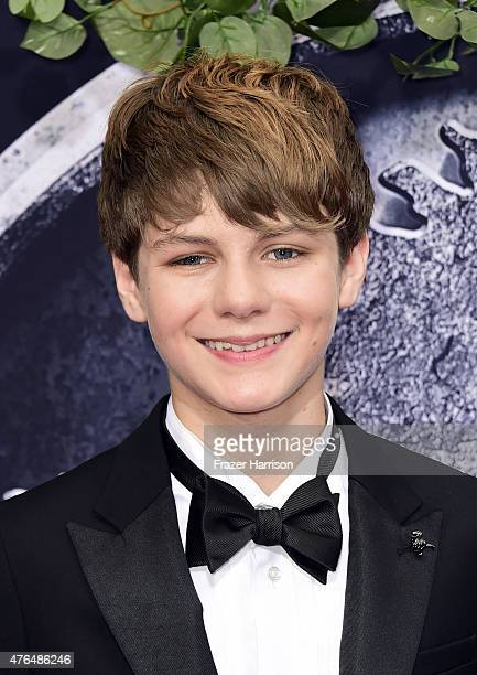 Actor Ty Simpkins attends the Universal Pictures' 'Jurassic World' premiere at Dolby Theatre on June 9 2015 in Hollywood California