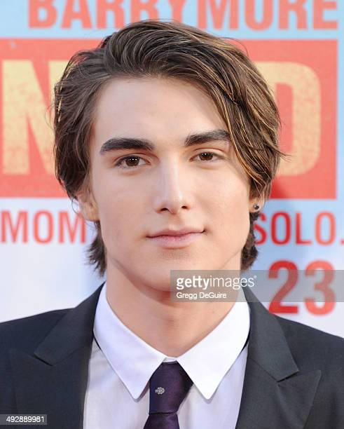 Actor Zak Henri arrives at the Los Angeles premiere of 'Blended' at TCL Chinese Theatre on May 21 2014 in Hollywood California
