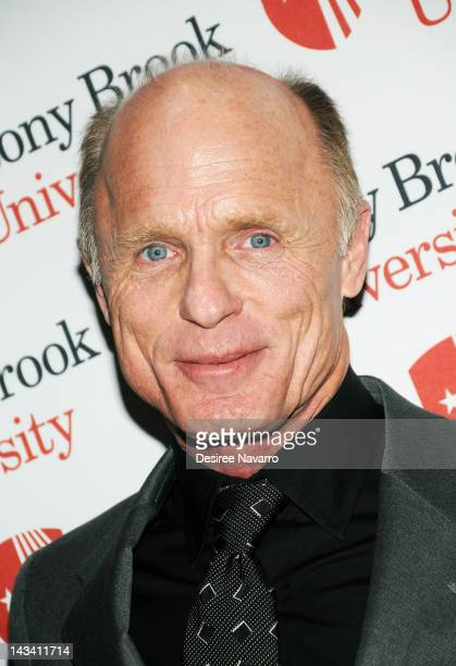 Actor/Director Ed Harris attends the 2012 Stars of Stony Brook gala at Pier Sixty at Chelsea Piers on April 25 2012 in New York City