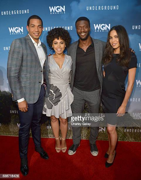 Actors Alano Miller Amirah Vann Aldis Hodge and Jurnee SmollettBell attend a screening of WGN America's 'Underground' as part of the Awardsline...