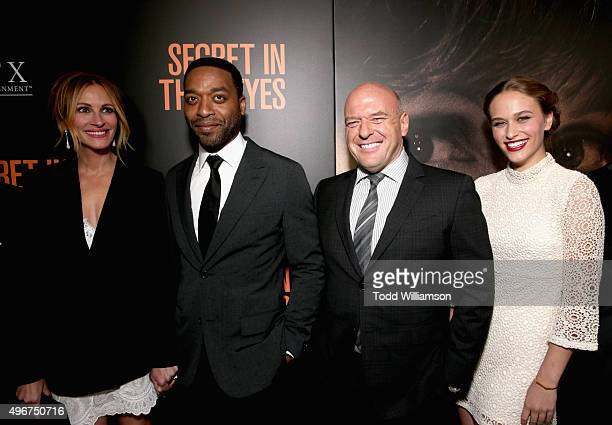 Actors Julia Roberts Chiwetel Ejiofor Dean Norris and Zoe Graham attend the Premiere of STX Entertainment's 'Secret In Their Eyes' at the Hammer...