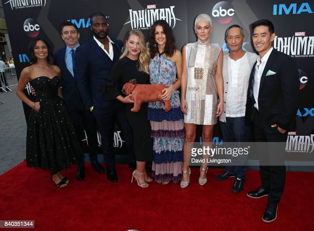 Actors Sonya Balmores Anson Mount Eme Ikwuakor Ellen Woglom Isabelle Cornish Serinda Swan Ken Leung and Mike Moh attend the premiere of ABC and...