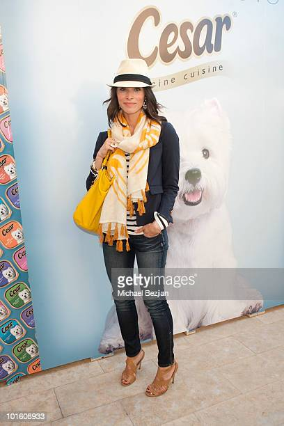 Actress Abigail Spencer attends Cesar Canine Cuisine at Kari Feinstein MTV Movie Awards Style LoungeDay 1 at Montage Beverly Hills on June 3 2010 in...
