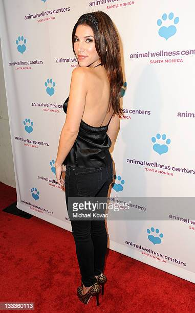 Actress Adrianna Costa attends the Animal Wellness Center Grand Opening Launch Party at Animal Wellness Center on February 11 2010 in Santa Monica...