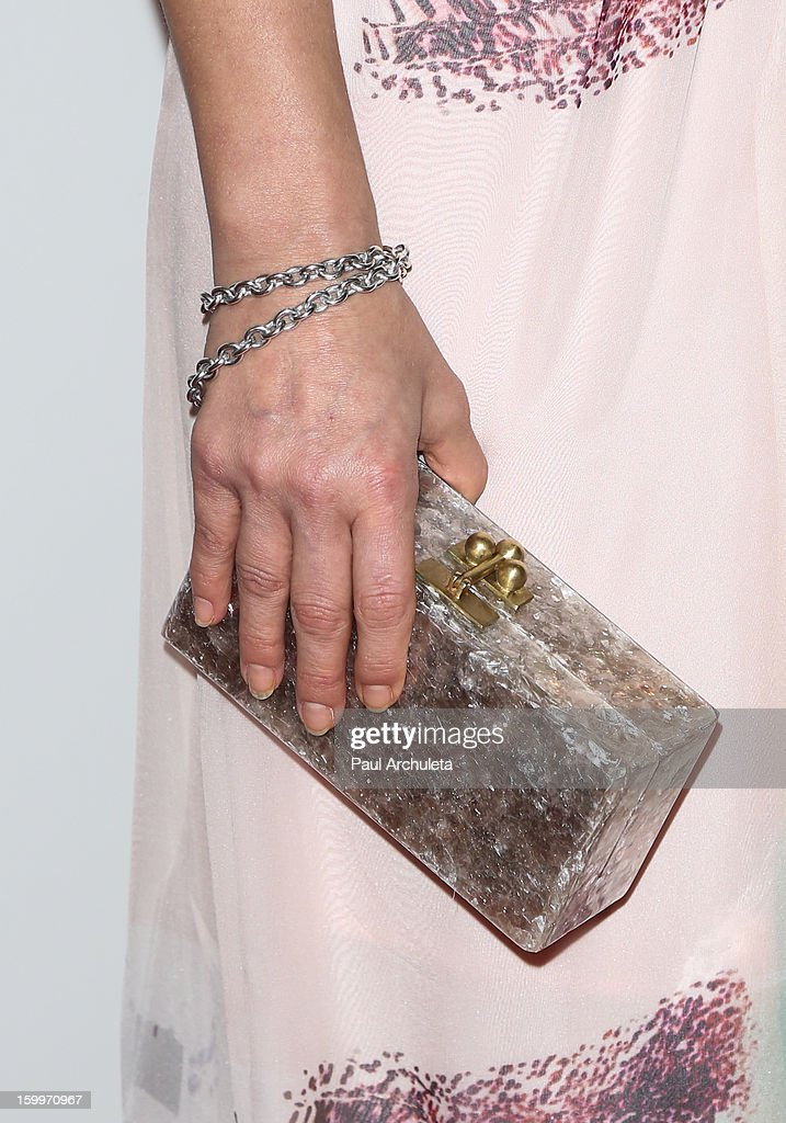 Actress Ali Larter (Handbag Detail) attends the LA Art Show opening night party at Los Angeles Convention Center on January 23, 2013 in Los Angeles, California.