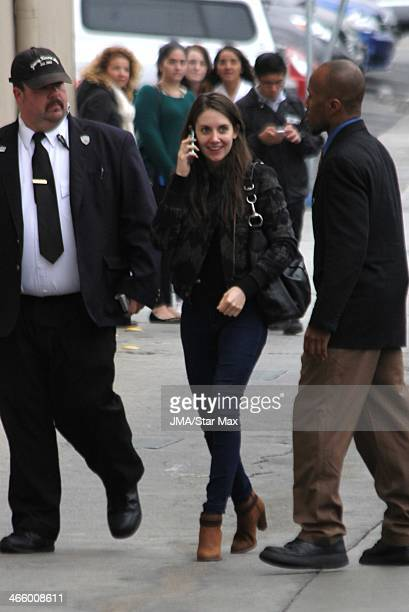 Actress Alison Brie is seen on January 30 2014 in Los Angeles California