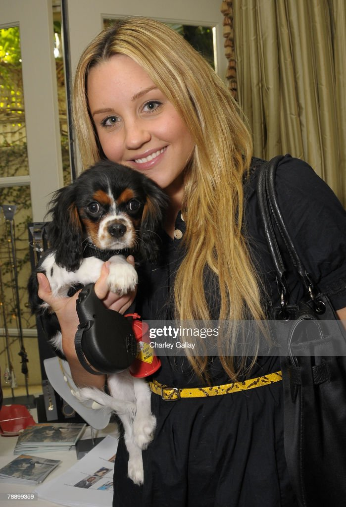 Actress Amanda Bynes, with her puppy Charlie, poses during the 2008 World Experience DPA gift lounge held at the The Peninsula Hotel on January 10, 2008 in Beverly Hills, California.