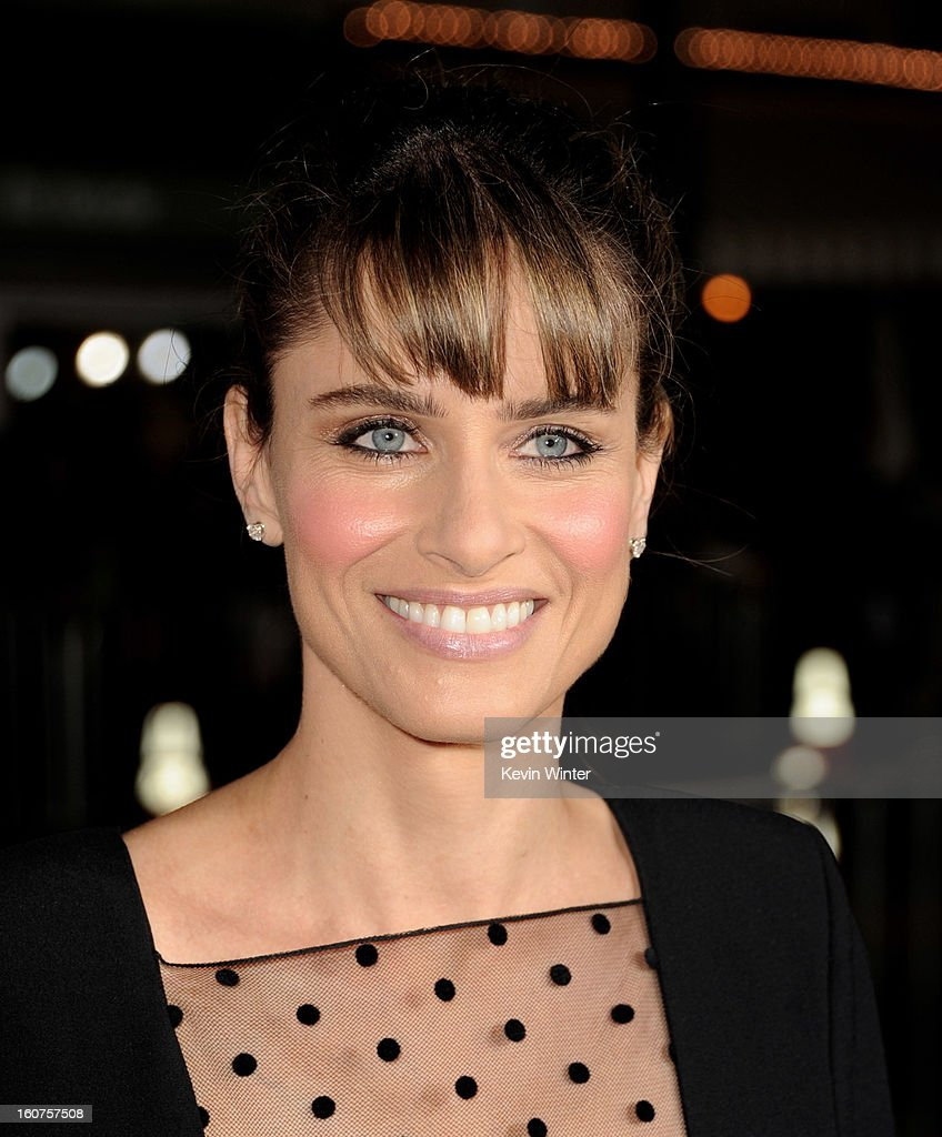 Actress Amanda Peet arrives at the premiere of Universal Pictures' 'Identity Thief' at the Village Theatre on February 4, 2013 in Los Angeles, California.
