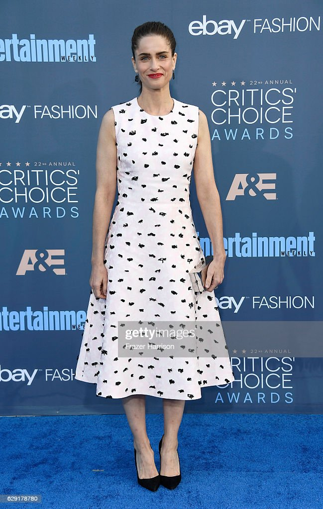 actress-amanda-peet-attends-the-22nd-annual-critics-choice-awards-at-picture-id629178780