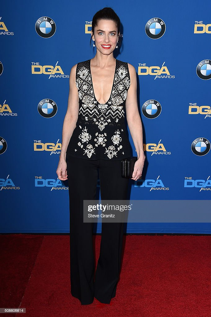 Actress Amanda Peet attends the 68th Annual Directors Guild Of America Awards at the Hyatt Regency Century Plaza on February 6 2016 in Los Angeles...