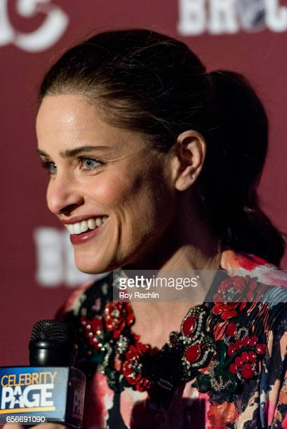 Actress Amanda Peet attends the 'Brockmire' red carpet event at 40 / 40 Club on March 22 2017 in New York City