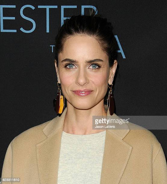 Actress Amanda Peet attends the premiere of 'Manchester by the Sea' at Samuel Goldwyn Theater on November 14 2016 in Beverly Hills California