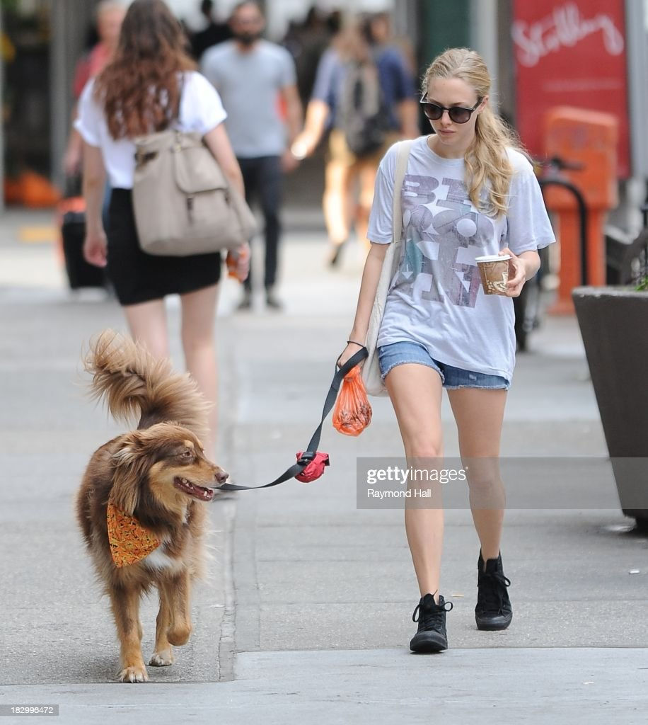 Actress <a gi-track='captionPersonalityLinkClicked' href=/galleries/search?phrase=Amanda+Seyfried&family=editorial&specificpeople=216619 ng-click='$event.stopPropagation()'>Amanda Seyfried</a> with her dog is seen in Soho on October 3, 2013 in New York City.