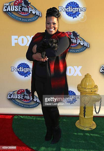 Actress Amber Riley attends Fox's Cause For Paws An AllStar Dog Spectacular at Barker Hangar on November 22 2014 in Santa Monica California