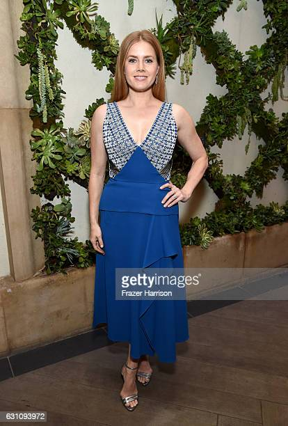 Actress Amy Adams attends the 17th annual AFI Awards at Four Seasons Los Angeles at Beverly Hills on January 6 2017 in Los Angeles California