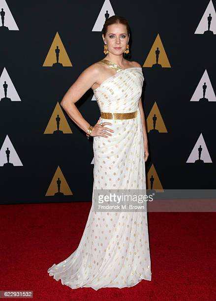 Actress Amy Adams attends the Academy of Motion Picture Arts and Sciences' 8th annual Governors Awards at The Ray Dolby Ballroom at Hollywood...