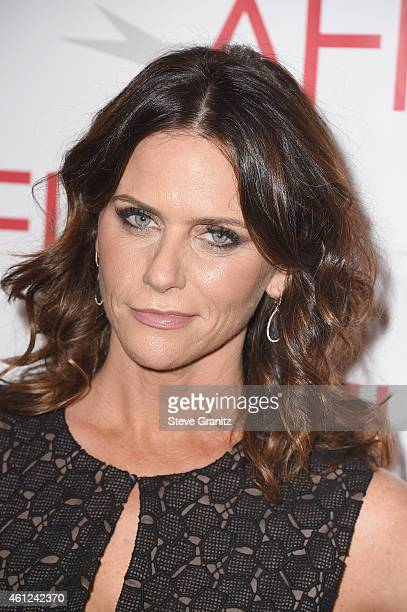 Actress Amy Landecker attends the 15th Annual AFI Awards at Four Seasons Hotel Los Angeles at Beverly Hills on January 9 2015 in Beverly Hills...