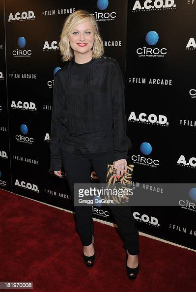 Actress Amy Poehler arrives at the Los Angeles premiere of 'ACOD' at the Landmark Theater on September 26 2013 in Los Angeles California
