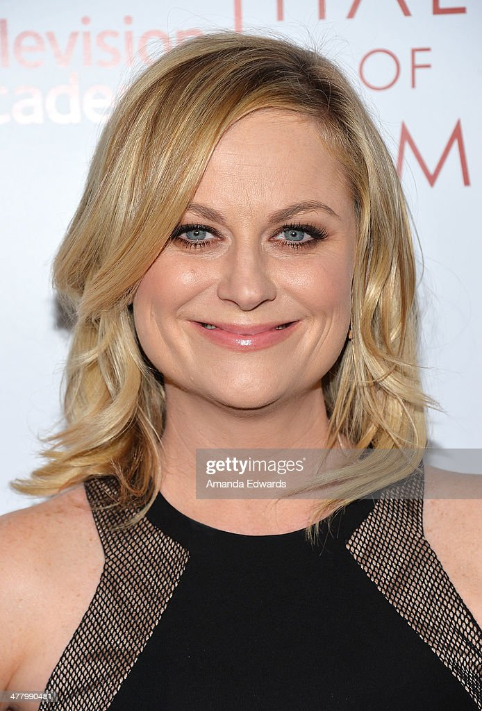 Actress <a gi-track='captionPersonalityLinkClicked' href=/galleries/search?phrase=Amy+Poehler&family=editorial&specificpeople=228430 ng-click='$event.stopPropagation()'>Amy Poehler</a> arrives at the The Television Academy's 23rd Hall Of Fame Induction Gala at The Regent Beverly Wilshire Hotel on March 11, 2014 in Beverly Hills, California.