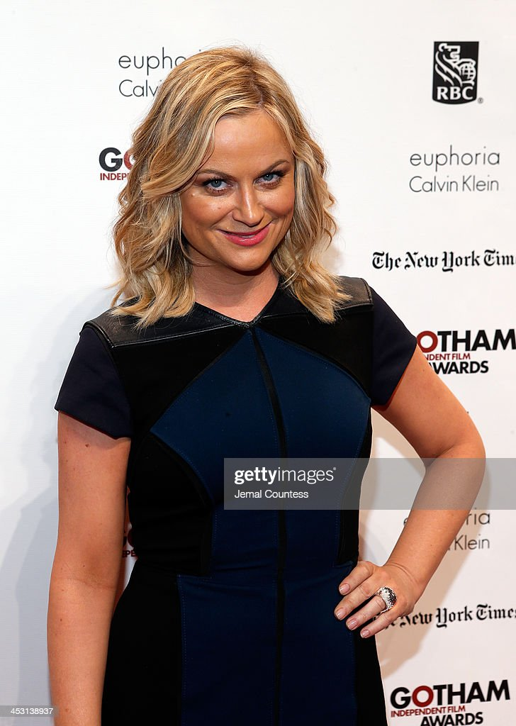 Actress <a gi-track='captionPersonalityLinkClicked' href=/galleries/search?phrase=Amy+Poehler&family=editorial&specificpeople=228430 ng-click='$event.stopPropagation()'>Amy Poehler</a> attends IFP's 23nd Annual Gotham Independent Film Awards at Cipriani Wall Street on December 2, 2013 in New York City.