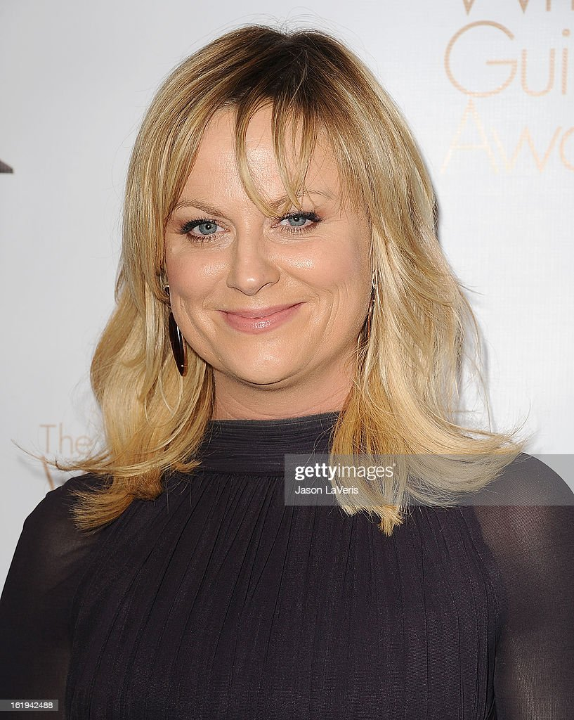 Actress <a gi-track='captionPersonalityLinkClicked' href=/galleries/search?phrase=Amy+Poehler&family=editorial&specificpeople=228430 ng-click='$event.stopPropagation()'>Amy Poehler</a> attends the 2013 Writers Guild Awards at JW Marriott Los Angeles at L.A. LIVE on February 17, 2013 in Los Angeles, California.
