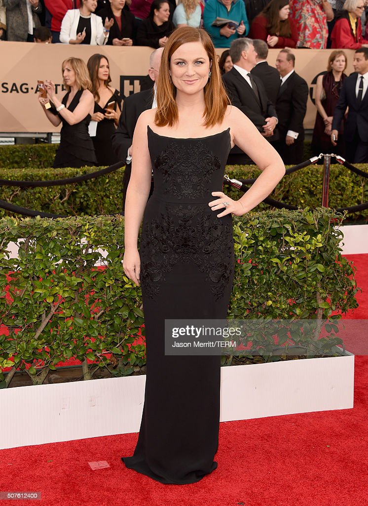 Actress <a gi-track='captionPersonalityLinkClicked' href=/galleries/search?phrase=Amy+Poehler&family=editorial&specificpeople=228430 ng-click='$event.stopPropagation()'>Amy Poehler</a> attends The 22nd Annual Screen Actors Guild Awards at The Shrine Auditorium on January 30, 2016 in Los Angeles, California. 25650_015