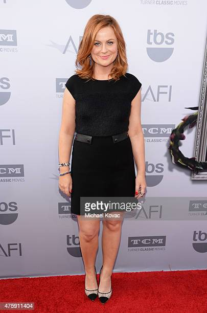 Actress Amy Poehler attends the 43rd AFI Life Achievement Award Gala honoring Steve Martin at Dolby Theatre on June 4 2015 in Hollywood California