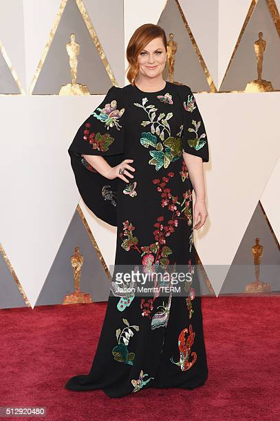 Actress Amy Poehler attends the 88th Annual Academy Awards at Hollywood Highland Center on February 28 2016 in Hollywood California