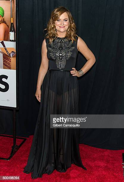 Actress Amy Poehler attends the 'Sisters' New York premiere at Ziegfeld Theater on December 8 2015 in New York City