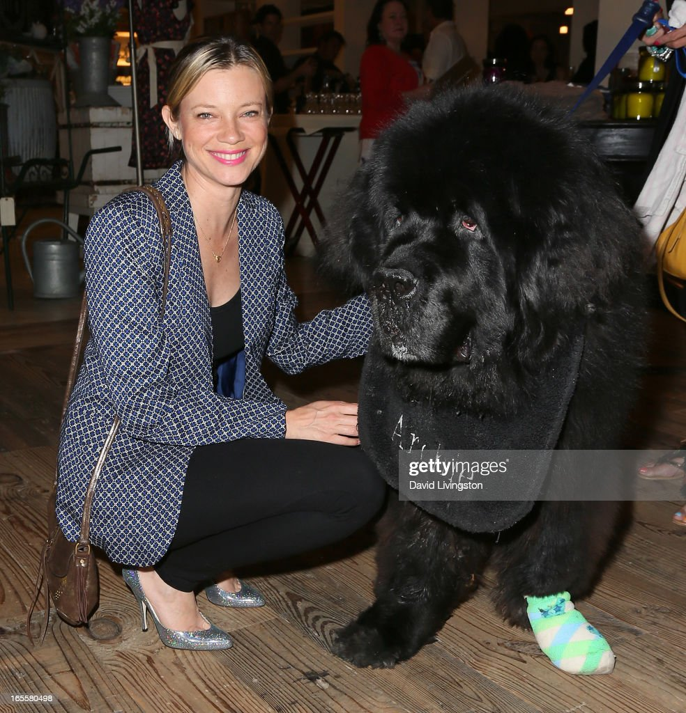 Actress Amy Smart attends a cocktail party and book signing for 'A Letter to My Dog: Notes to Our Best Friends' at Anthropologie on April 4, 2013 in Beverly Hills, California.