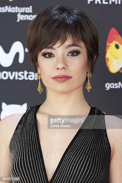 Actress Anna Castillo attends the Feroz cinema awards 2016 at the Duques de Pastrana Palace on January 23 2017 in Madrid Spain
