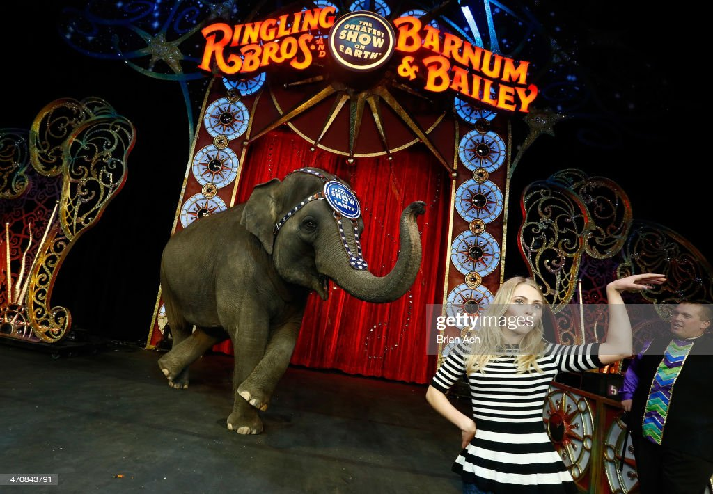 Actress <a gi-track='captionPersonalityLinkClicked' href=/galleries/search?phrase=AnnaSophia+Robb&family=editorial&specificpeople=674007 ng-click='$event.stopPropagation()'>AnnaSophia Robb</a> attends Ringling Bros. and Barnum & Bailey presents 'Legends' at Barclays Center of Brooklyn on February 20, 2014 in New York City.