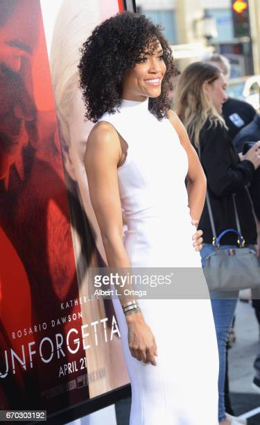 Actress Annie Ilonzeh arrives for the Premiere Of Warner Bros Pictures' 'Unforgettable' held at TCL Chinese Theatre on April 18 2017 in Hollywood...