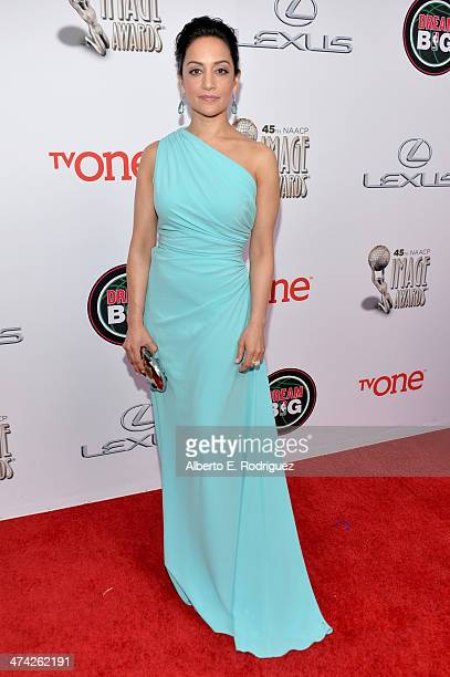 Actress Archie Panjabi attends the 45th NAACP Image Awards presented by TV One at Pasadena Civic Auditorium on February 22 2014 in Pasadena California