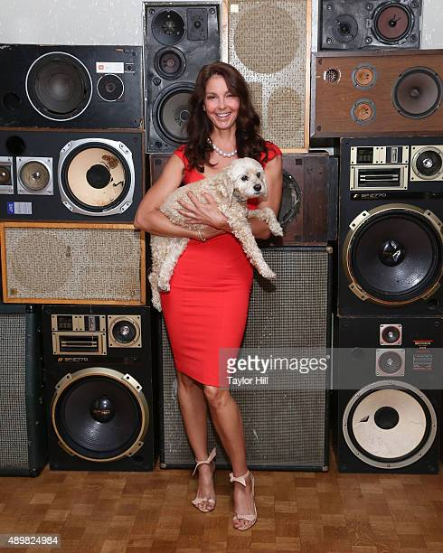 Actress Ashley Judd and her cockapoo Shug attend a photocall for 'Big Stone Gap' at Ace Hotel on September 24 2015 in New York City