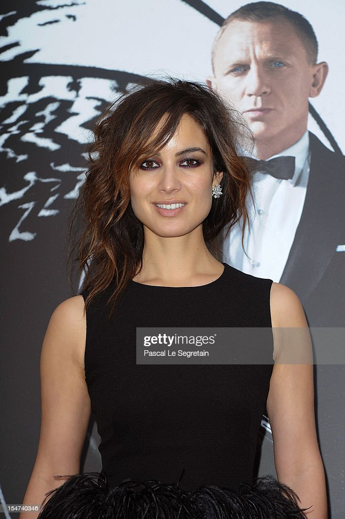 Actress Berenice Marlohe poses during the photocall for the film 'Skyfall' at Hotel George V on October 25, 2012 in Paris, France.