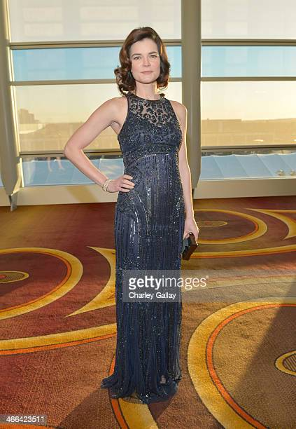 Actress Betsy Brandt attends the 2014 Writers Guild Awards LA Ceremony at JW Marriott at LA Live on February 1 2014 in Los Angeles California