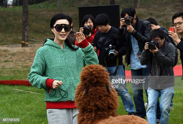 Actress Bingbing Fan plays with an alpaca on October 23 2014 in Beijing China