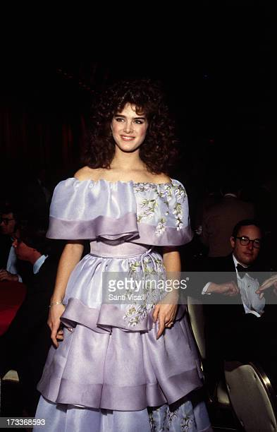 Actress Brook Shields at a party on September 241982 in New York New York