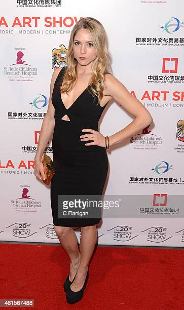 Actress Brooke Nevin attends the LA Art Show 2015 Opening Night Premiere Party at Los Angeles Convention Center on January 14 2015 in Los Angeles...