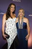 Actress Brooke Shields and Princess Yasmin Aga Khan attends the 2009 Alzheimer's Association Rita Hayworth Gala at The Waldorf Astoria on October 27...