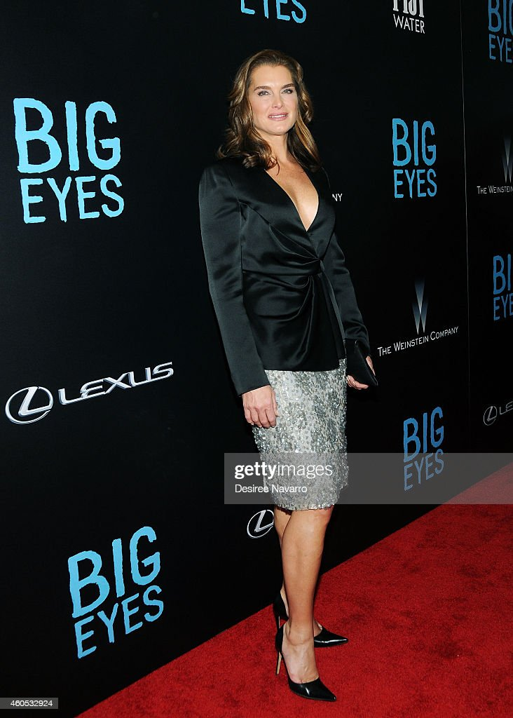 Actress Brooke Shields attends 'Big Eyes' New York Premiere at Museum of Modern Art on December 15 2014 in New York City