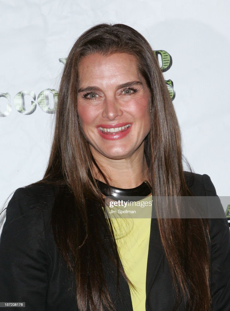 Actress <a gi-track='captionPersonalityLinkClicked' href=/galleries/search?phrase=Brooke+Shields&family=editorial&specificpeople=202197 ng-click='$event.stopPropagation()'>Brooke Shields</a> attends 'Dead Accounts' Broadway Opening Night at Music Box Theatre on November 29, 2012 in New York City.