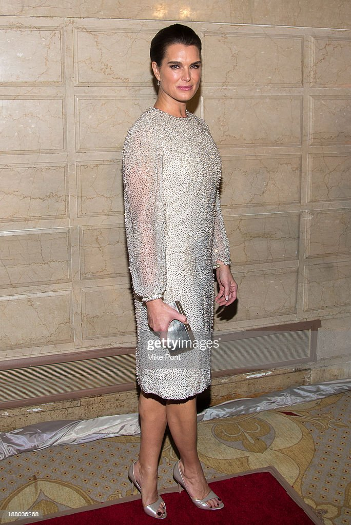 Actress <a gi-track='captionPersonalityLinkClicked' href=/galleries/search?phrase=Brooke+Shields&family=editorial&specificpeople=202197 ng-click='$event.stopPropagation()'>Brooke Shields</a> attends the 20th New York Landmarks Conservancy's Living Landmarks Ceremony at The Plaza Hotel on November 14, 2013 in New York City.